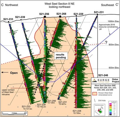 Figure 4. West Seel cross section C-C' showing results for holes S21-228, 231, 233, 239, 256, and partial results for S21-268. See Figure 1 for section location